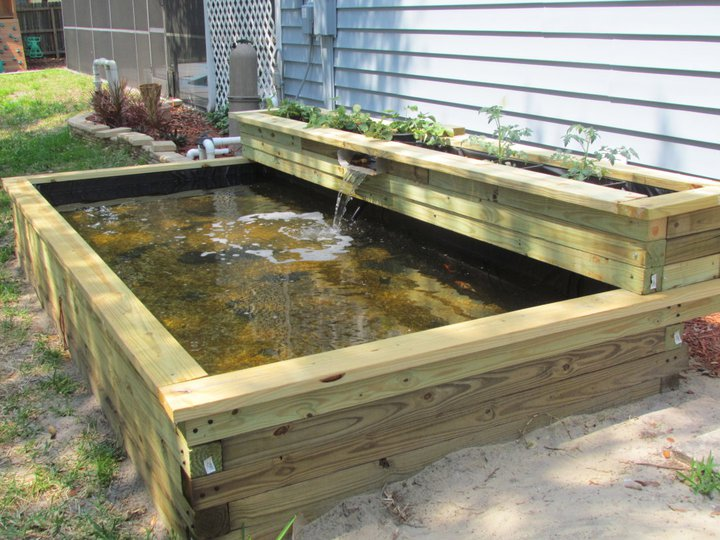 Fabriquer un bassin hors sol en bois for Garden pond design and construction