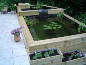 bassin jardin bois